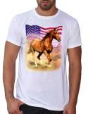 T-shirt blanc - Homme - Quarter horse