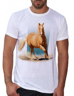 T-shirt blanc - homme - cheval d'Alex