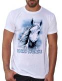 T-shirt blanc - Homme - Cheval blanc